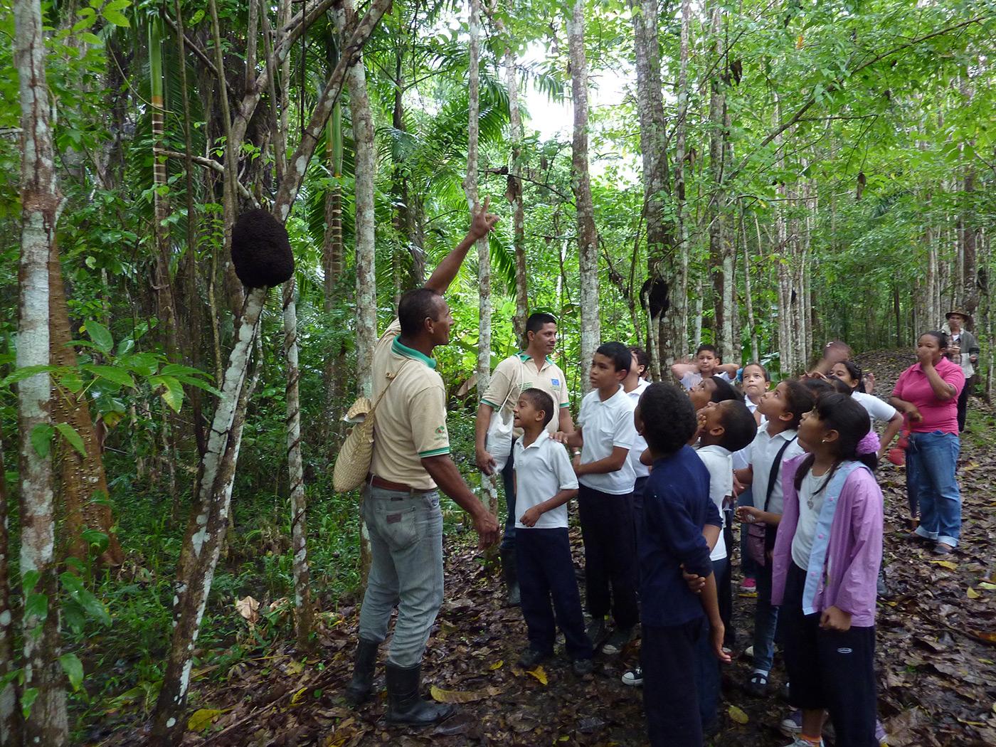 Umweltbildung Venezuela © OroVerde / E. Mannigel